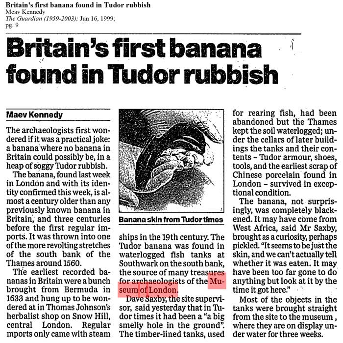 Guardian Britains first banana found